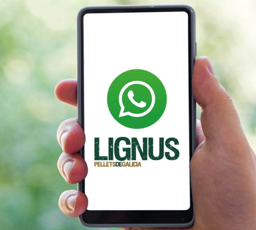 Lignus WhatsApp Business