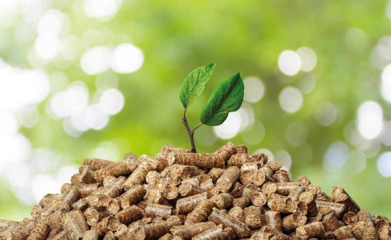Pellets: energía renovable