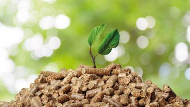 pellets opción más renovable