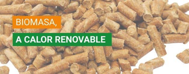 Biomasa, a calor renovable